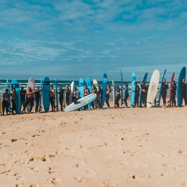 surfkemp Francie