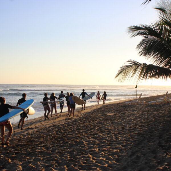 Surf Dominikána