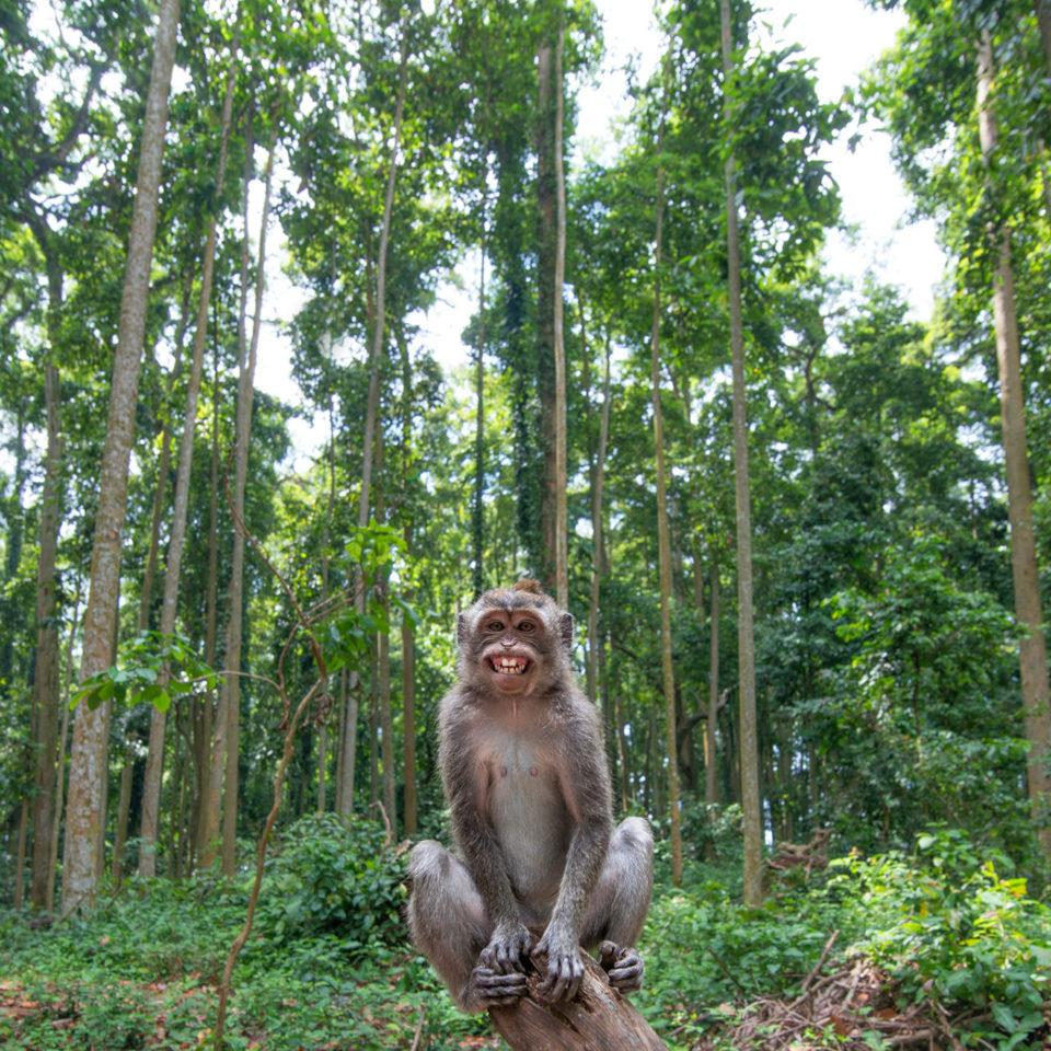 joga na Bali